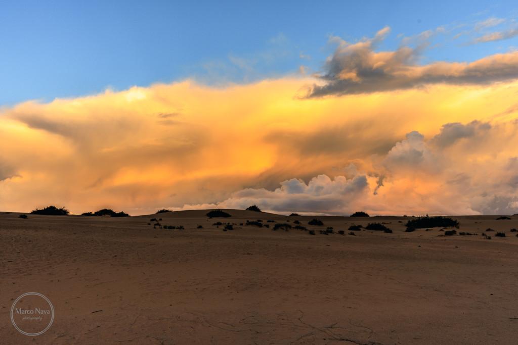 #MarcoNavaFotografo#Fuerteventura12