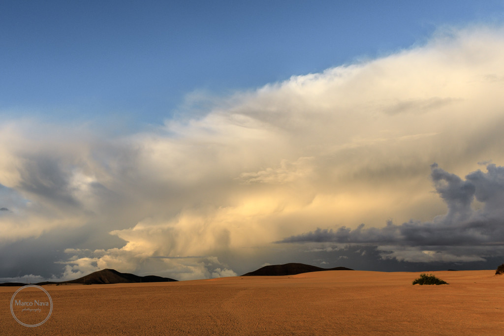 #MarcoNavaFotografo#Fuerteventura13