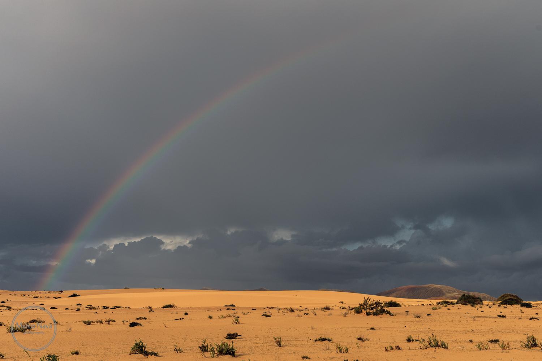 #MarcoNavaFotografo#Fuerteventura15