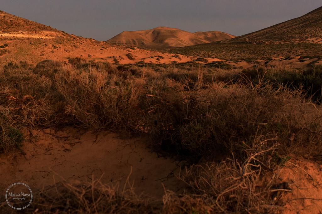#MarcoNavaFotografo#Fuerteventura2