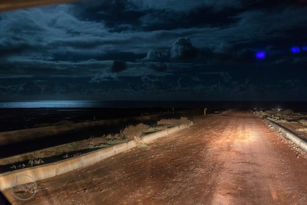 #MarcoNavaFotografo#Fuerteventura32